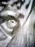 Tiger's eye by Sukai3