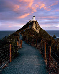 Nugget Point Lighthouse by saxtim