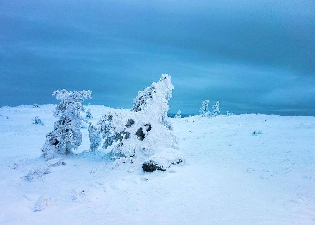 Arctic landscape by Tam3n