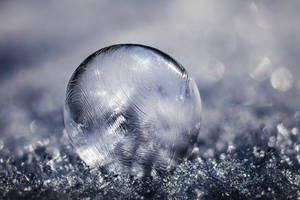 Ice Jewel by Tam3n