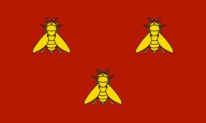 Merovingian Frankia Flag