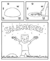 Take A Salagander
