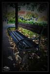 Bench in autumn...