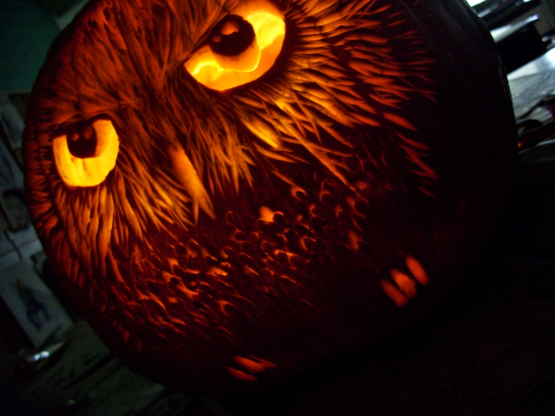Owl pumpkin by rachguerrero on deviantart