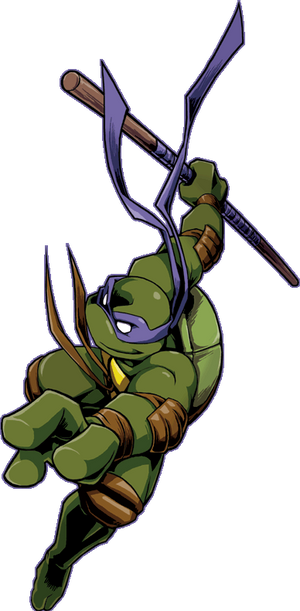 shellshock -Donatello-
