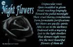 Night Flowers by Barosus