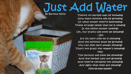 Just Add Water (Willy Wonka Parody)