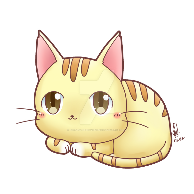 Cat chibi drawing