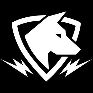 lightningdogs's Profile Picture
