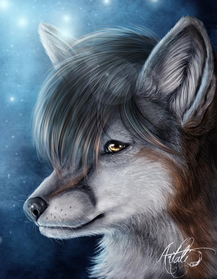 fauxhawkfox - CM by Artali-Artist