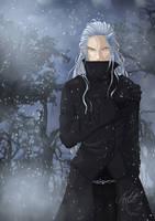 Winter is back.. - P by Artali-Artist