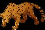 TLK Cheetah