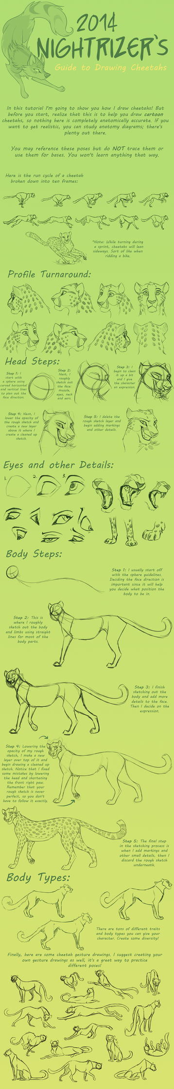 Guide to Drawing Cheetahs by Nightrizer
