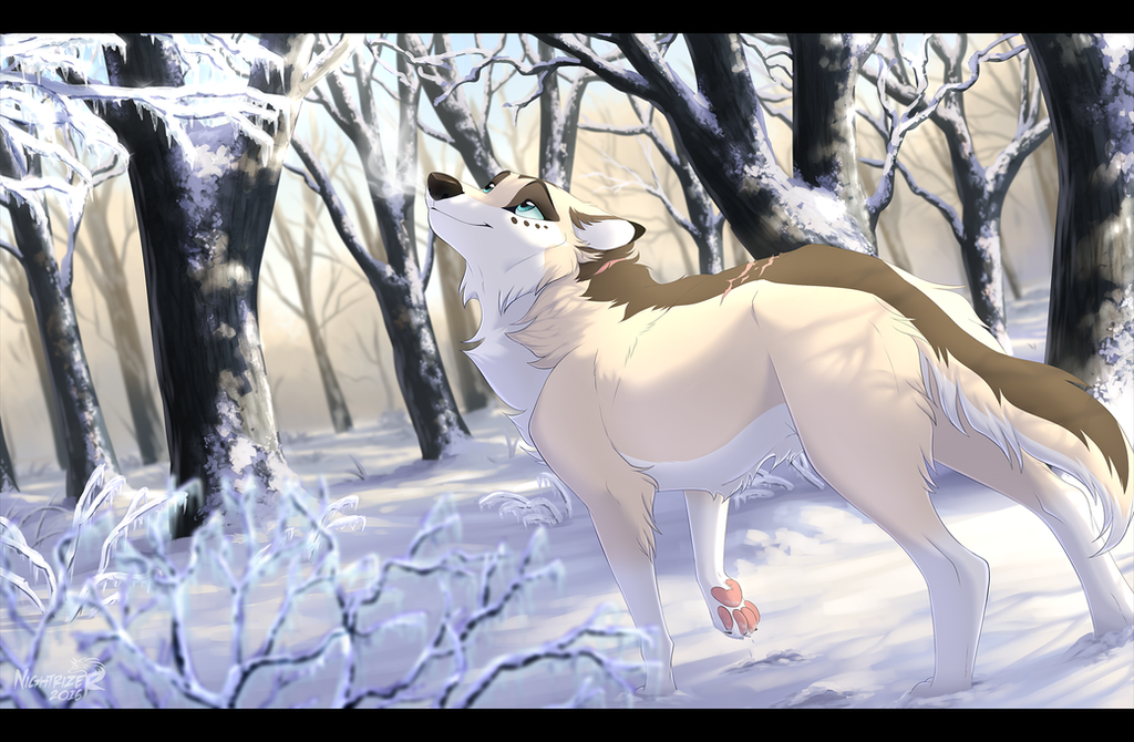 icy_morning_by_nightrizer-daeocp2.png