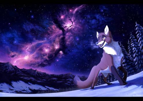 Follow the Stardust Trail