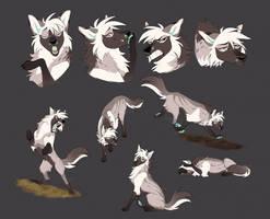 Zaki Sketch Page