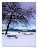 solitary view by anvi