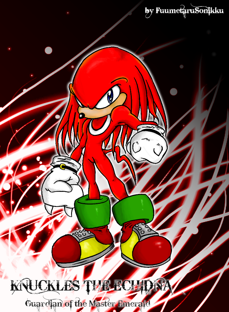 Knuckles the Echidna by fumetarusonikku