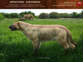 Epicyon haydeni by RomanYevseyev