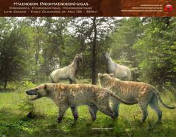 Hyaenodon gigas by RomanYevseyev