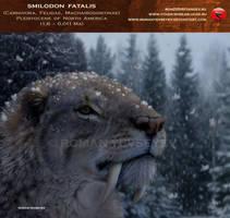 Smilodon fatalis (winter smilo) by RomanYevseyev