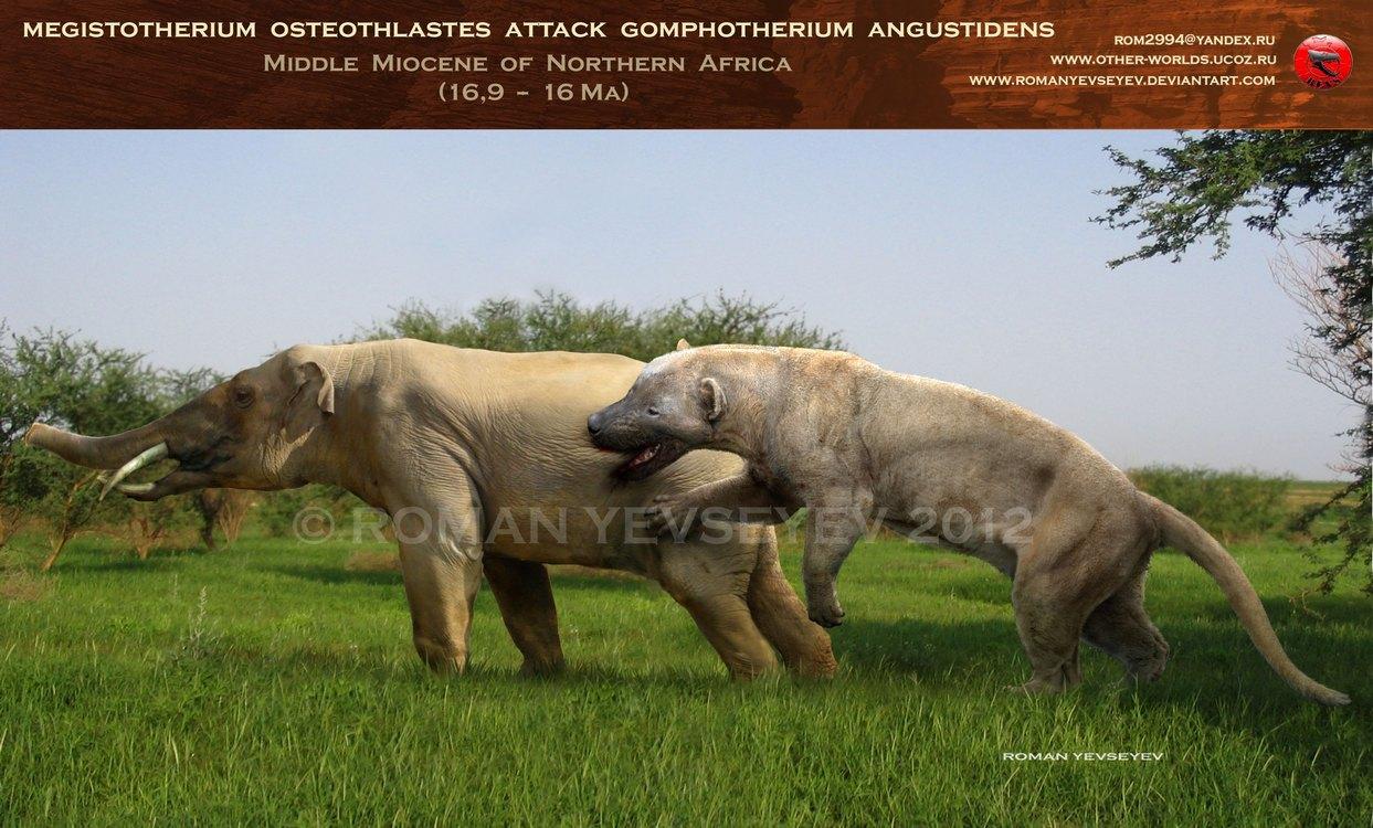 Megistotherium attacks Gomphotherium by RomanYevseyev on DeviantArt