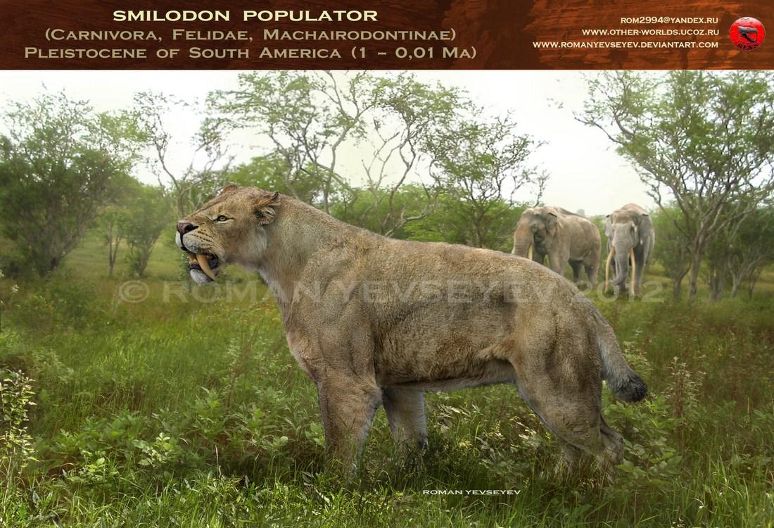 Smilodon Face By Pyroraptor42 On Deviantart: Posts During October 2012 For Megafelis Fatalis