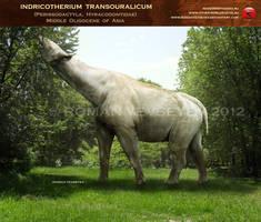 Indricotherium transouralicum by RomanYevseyev