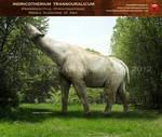 Indricotherium transouralicum