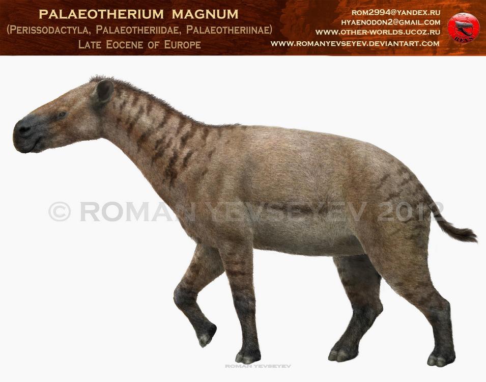 Paleotherium by RomanYevseyev