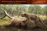 Thylacoleo carnifex kill Phascolonus gigas