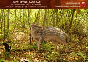 Sifrhippus sandrae by RomanYevseyev