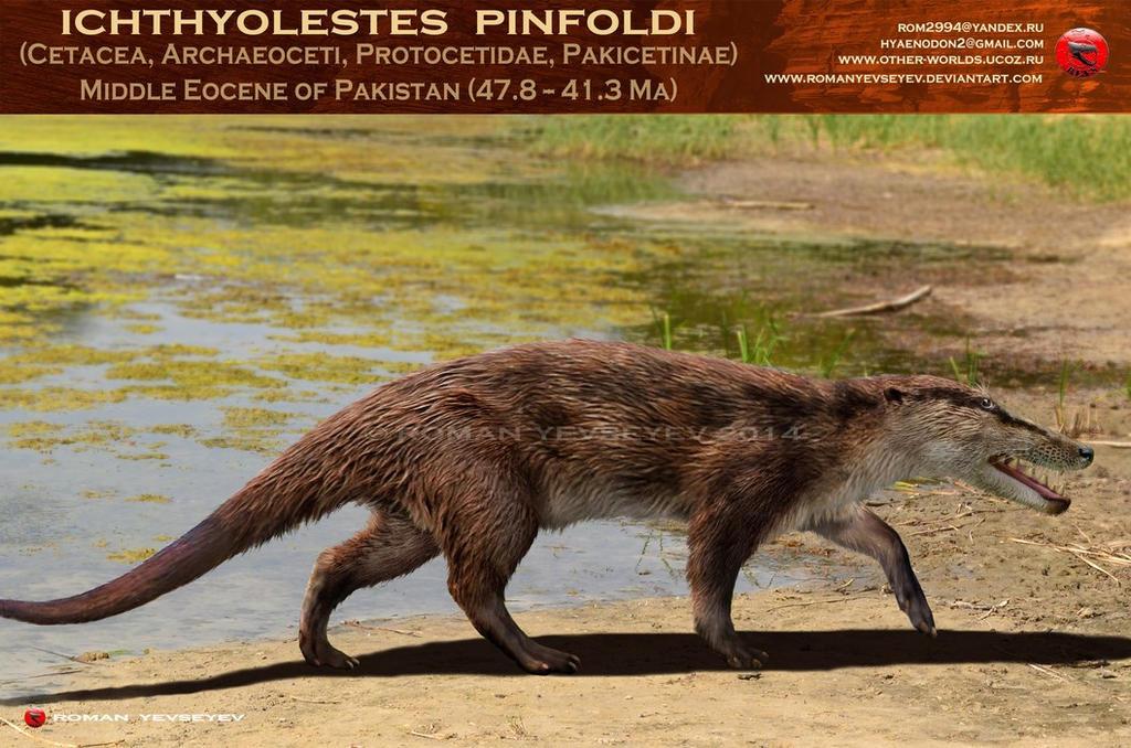 Ichthyolestes pinfoldi by RomanYevseyev