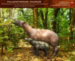 Palaeotherium magnum