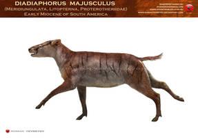 Diadiaphorus majusculus by RomanYevseyev