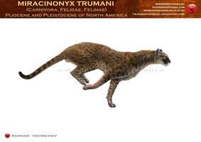 Miracinonyx trumani by RomanYevseyev