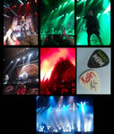 Korn and Breaking Benjamin Concert by HaruShadows