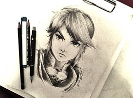 Link from Hyrule Warriors by Rosekie