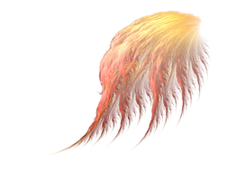 Fluffy wings png