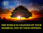 Example not opnion