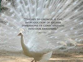 The key to growth by uki--uki