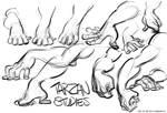 Studies from Tarzan
