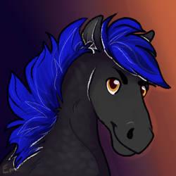 inconsistent pony style