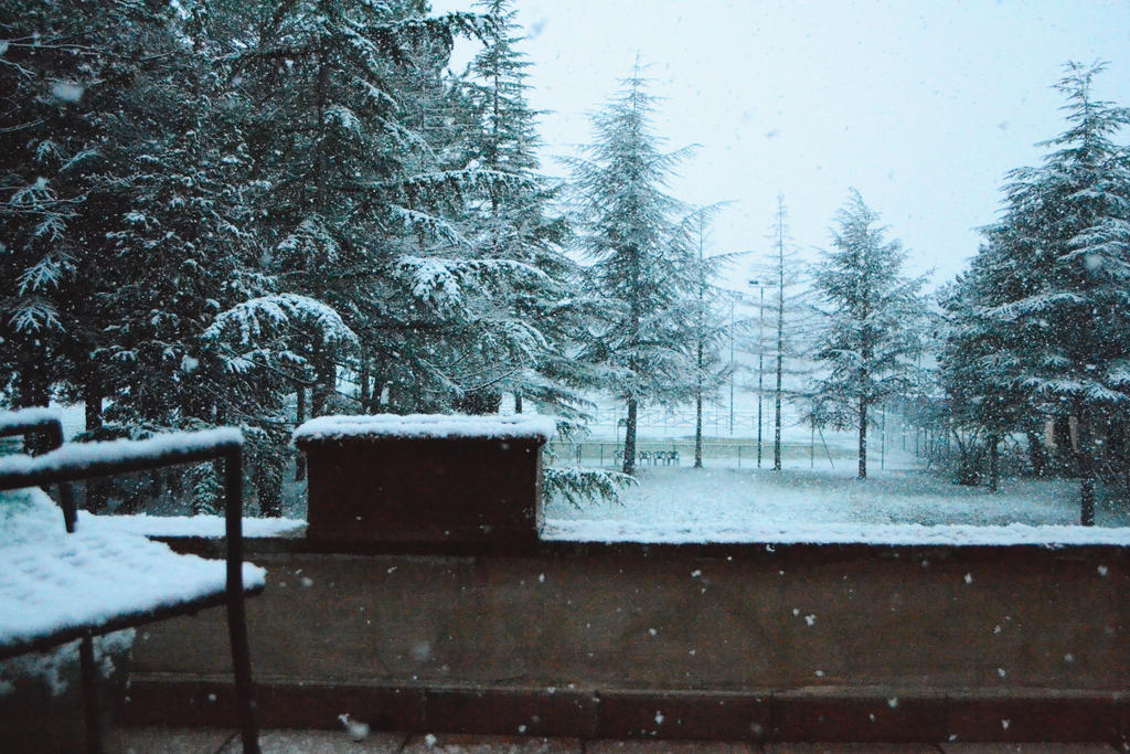 Let It Snow by Silvia-Z