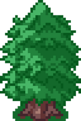 Evergreen B 32x48