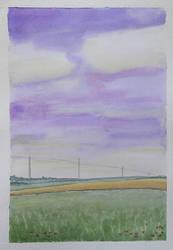 Field in summer by gardoll
