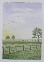 Meadow early morning by gardoll