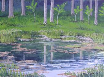 Forrest pond by gardoll