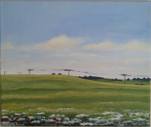Summer fields. by gardoll