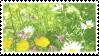 flower stamp by taishokun